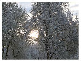 Зима подкралась незаметно