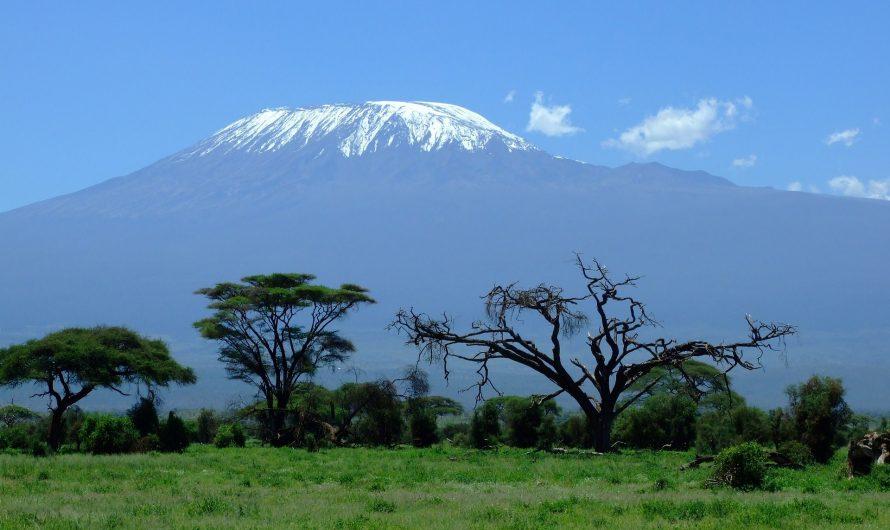 Килиманджаро 2021